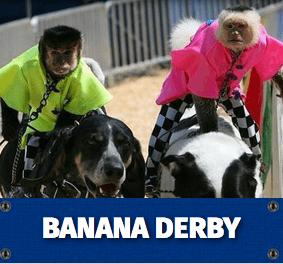 Banana Derby